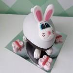Αυγό Rabbit 2