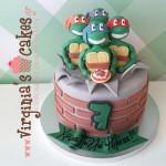Ninja turtles 5